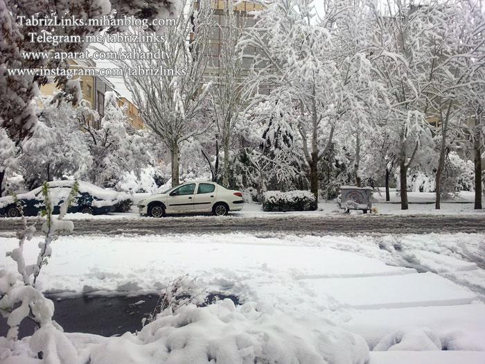 برف سنگین