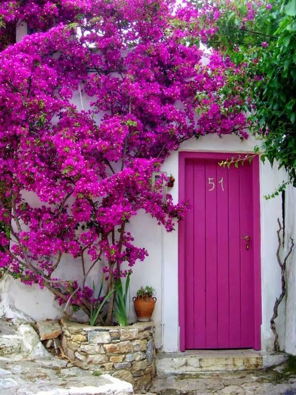 درب ورودی رنگی شیک