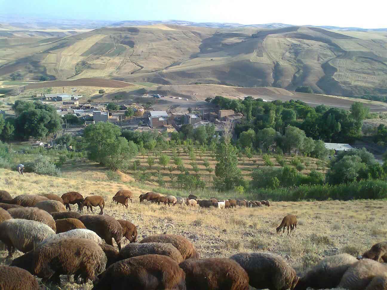 تصاویر روستای زیبای ایده لو