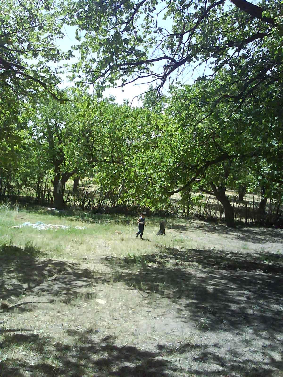 باغ آقای جعفر فرجی 1387