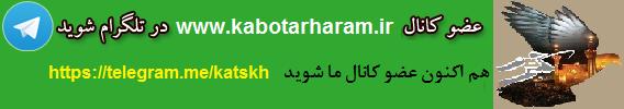 تلگرام سایت