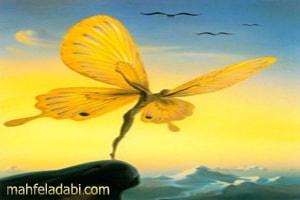 چوان تسو خواب دید که پروانه ای  است