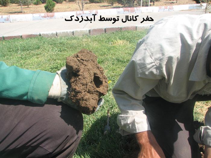 آبدزدک www.sarafraz-hezarmasjed.ir
