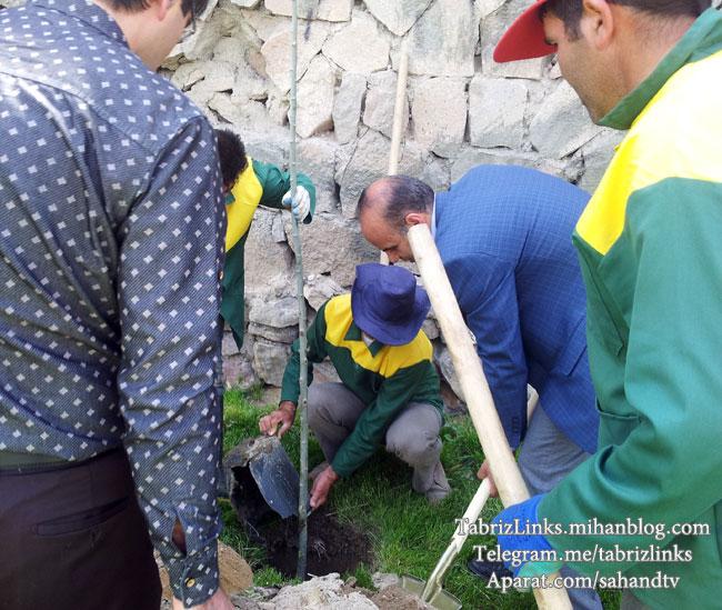 سازمان پارکها و فضای سبز شهرداری تبریز