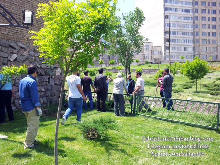 کمپین درختکاری تبریز شهر آرزوها