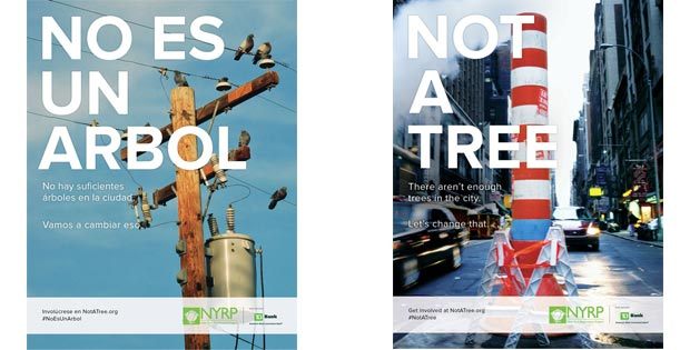 کمپین درختکاری