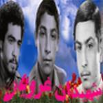 سه شفیع