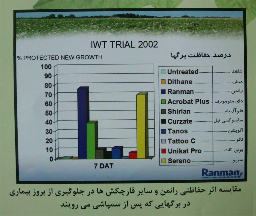 www.sarafraz-hezarmasjed.ir رانمن