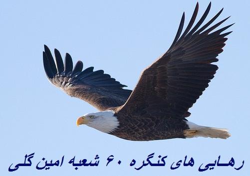 http://s6.picofile.com/file/8252382442/61914_qby11uPz.jpg