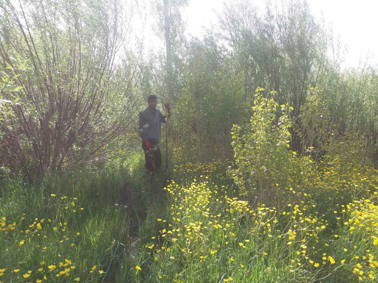 بهار در روستای ایده لو سال 1395