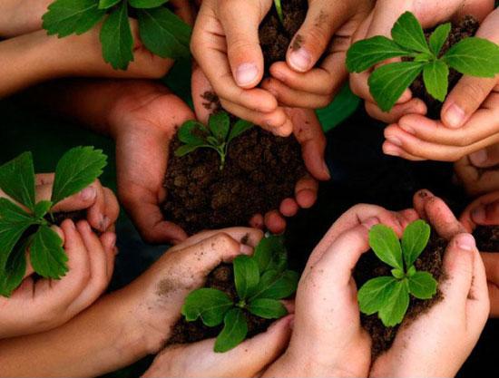 امسال برای « محیط زیست » 5 قدم بردارید! , مهارت های زندگی
