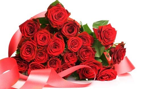 http://s6.picofile.com/file/8255142084/roze_photo.jpg
