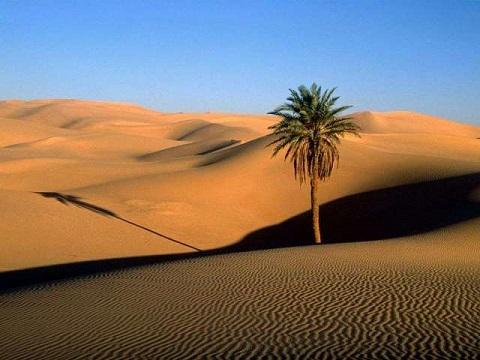 بهترین کویر ایران کویر مصر