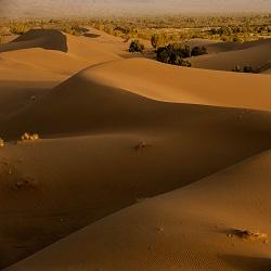 اطلاعات درباره کویر مصر