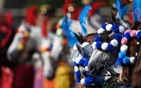 برگزاری یکی از مسابقات سنتی اسب سواری در برزیل