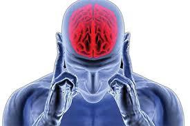 نگاهی به مغز قاتلها / ویدئو
