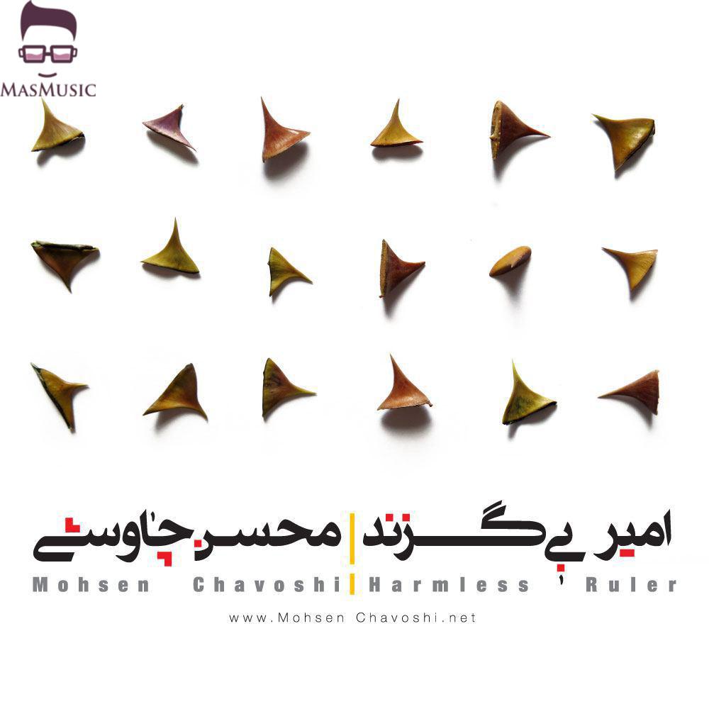 دانلود آهنگ امیر بی گزند از محسن چاوشی