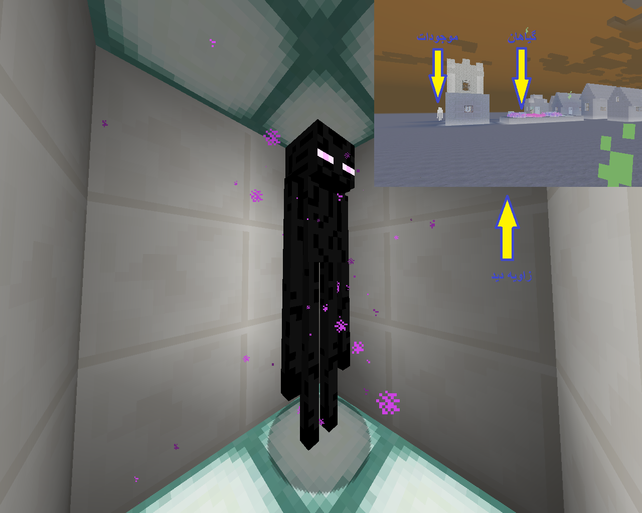 EnderMan + View