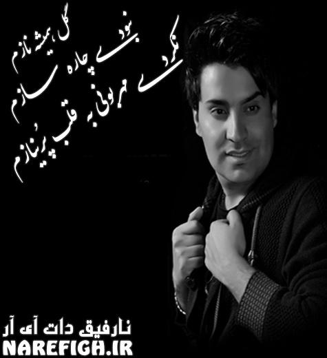 دانلود آهنگ گل همیشه نازم از محمد امین غلامیاری با دو کیفیت 128 و 320