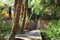 کویر خبیص | خبیص نام دیگر کدام کویر است؟ | مصر شهداد لوت