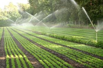 دانلود پاورپویت با موضوع ابیاری تحت فشار زمین های کشاورزی و باغات