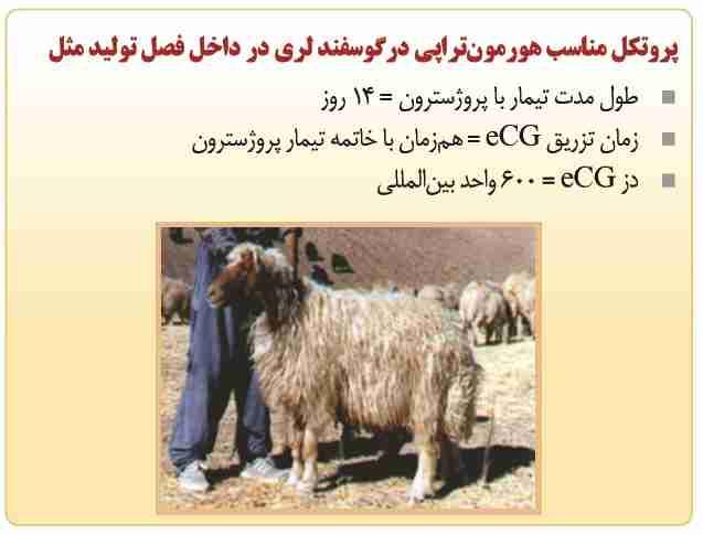 پروتوکل مناسب هورمون تراپی در گوسفند لری