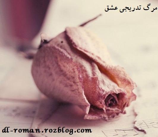 دانلود رمان مرگ تدریجی عشق