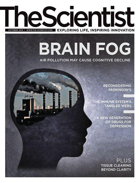 Free Download The Scientist Magazine – October 2019