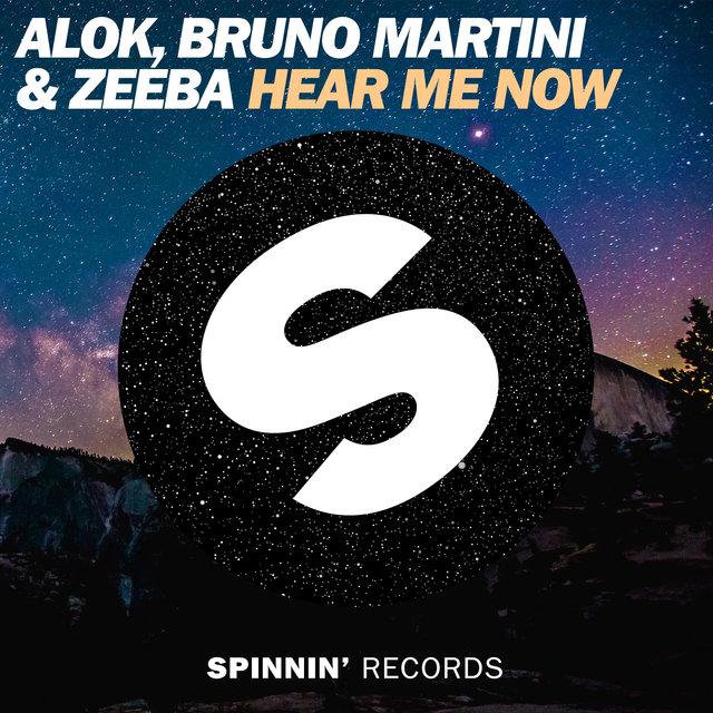 Alok Remix دانلود آهنگ Hear Me Now از Alok و Bruno Martini با ترجمه متن