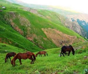 روستای رویایی سوباتان