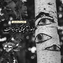 عکس نوشته آیه 18 سوره حجرات