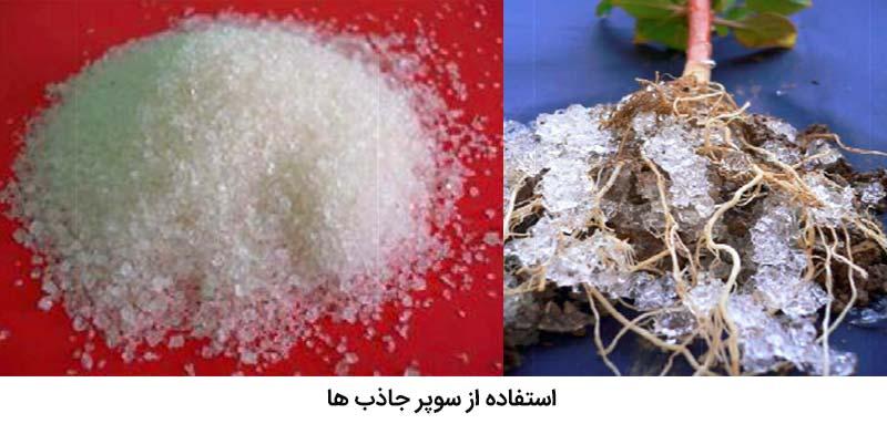 استفاده از سوپر جاذب برای کاهش تنش خشکی در مرکبات