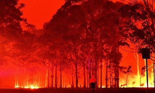تعبیر تغییرات اقلیمی: تابستان خشمگین استرالیا