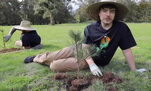 یوتیوبری مشهور ۲۰ میلیون دلار برای کاشت ۲۰ میلیون درخت جمع کرد