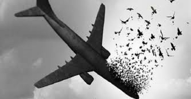 پیام کانون وکلای دادگستری کردستان در خصوص سقوط هواپیمای اکراینی