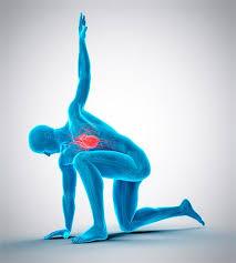 چه ورزش هایی برای بیماران قلبی مفیداست