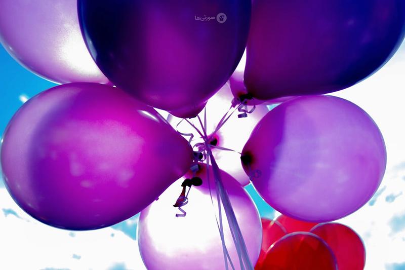 Purple_1_1_.jpg