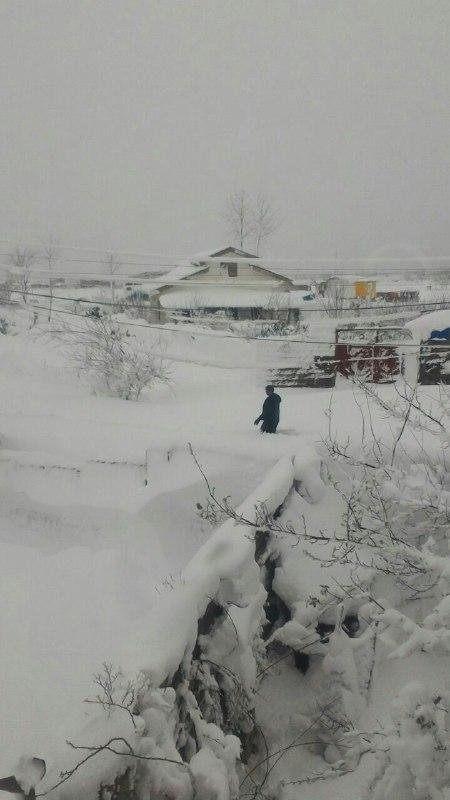 بارش برف شدید میانپشته رودسر