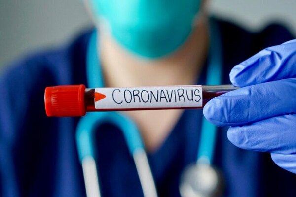 آخرین آمار مربوط به کرونا در ٢۴ساعت گذشته ۵٢٣ نفر دیگر به کرونا مبتلا شدند