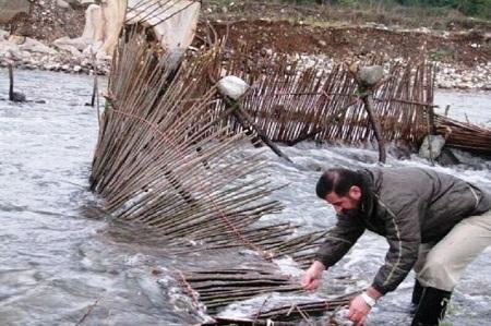 سدهای ماهیگیری از رودخانههای آستارا جمعآوری شد