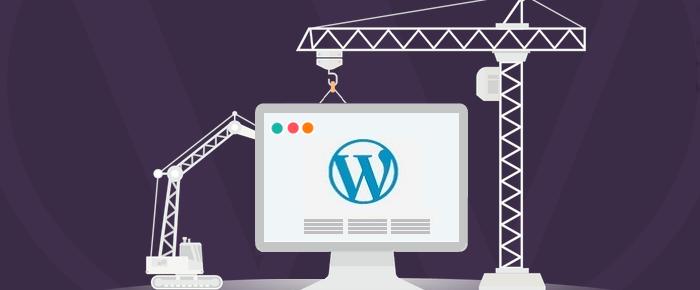 طراحی و میزبانی سایت در زیباکنار