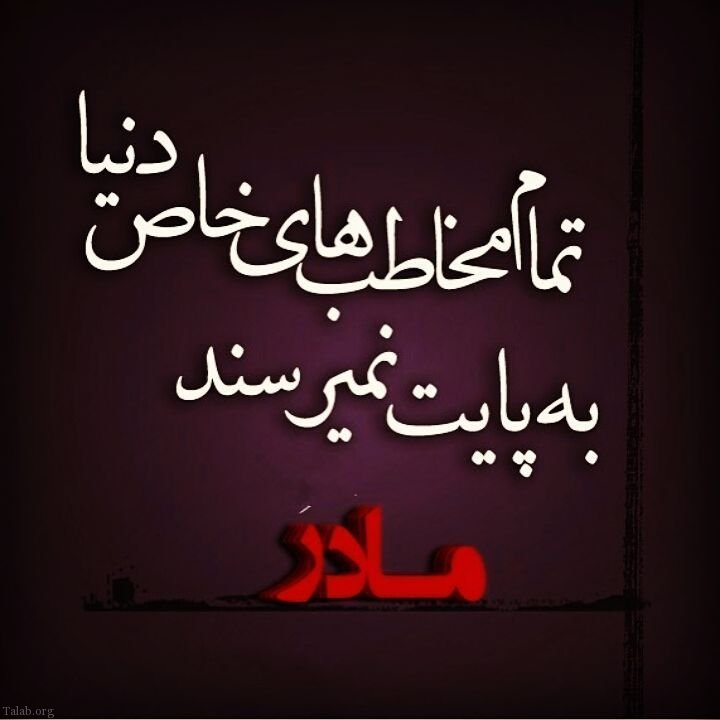 1246989093 talab org